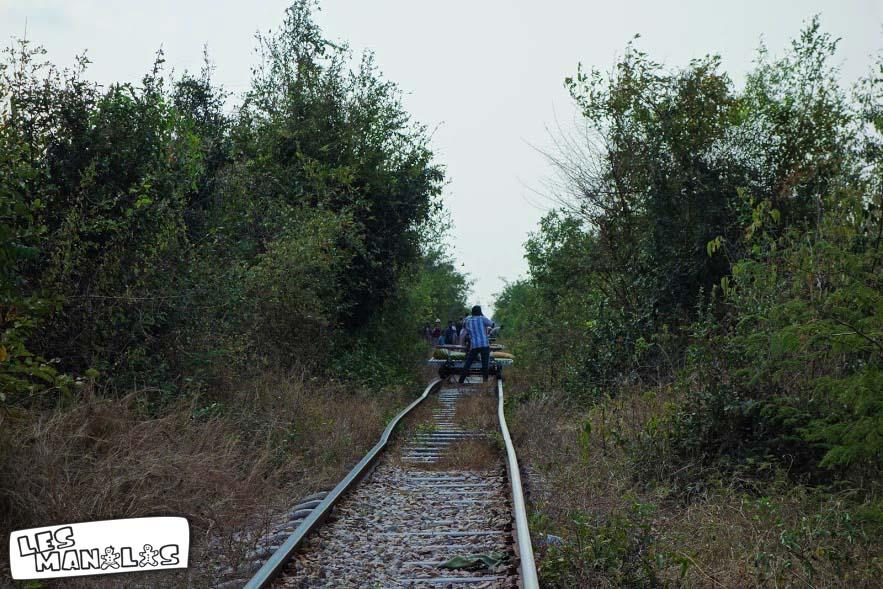lesmanalas_bambou_train_4
