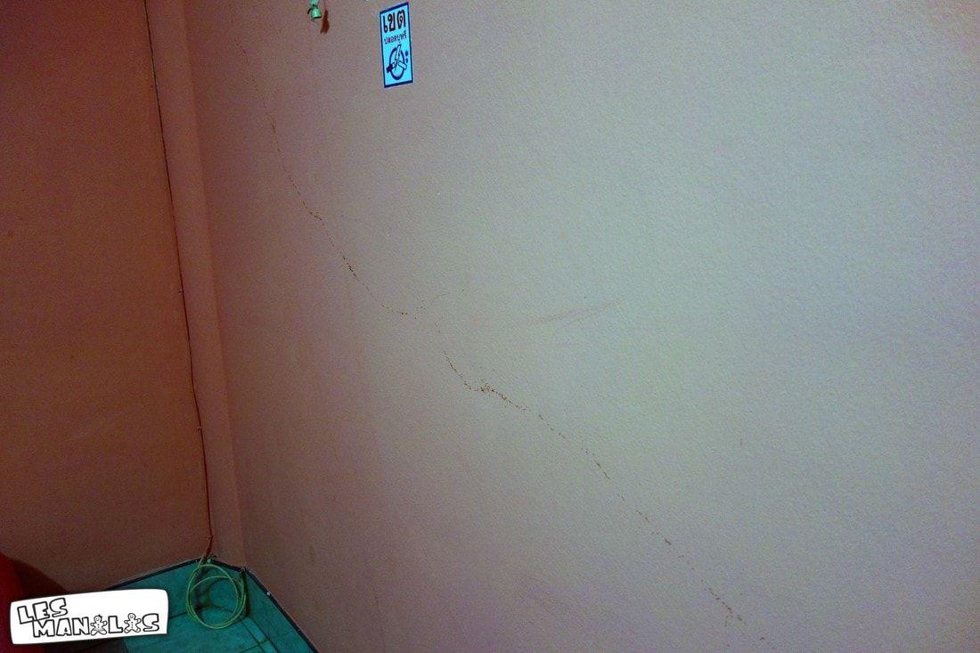 lesmanalas-fourmis