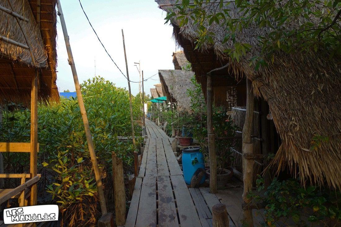 lesmanalas-mangrove-27_orig