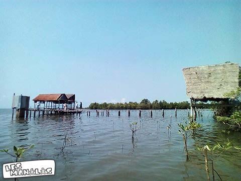 lesmanalas-mangrove-40_orig