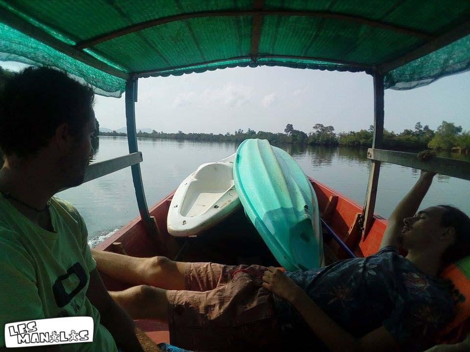 lesmanalas-mangrove-43_orig