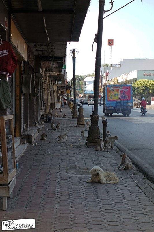 lesmanalas_lopburi_street