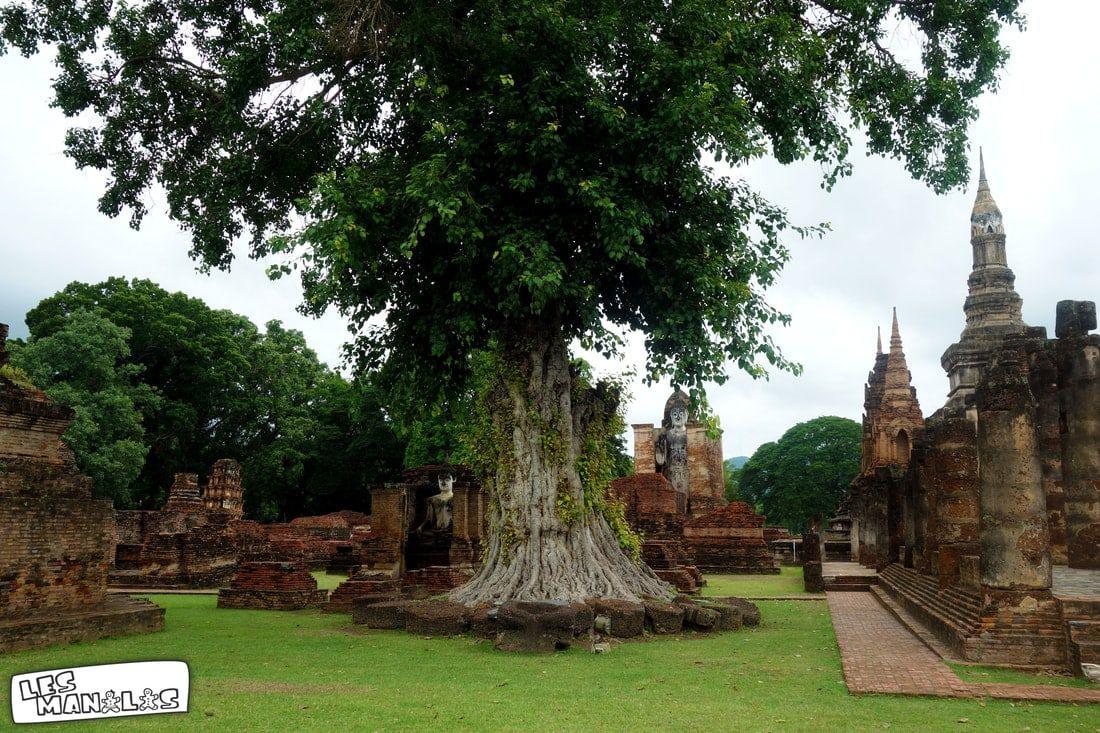 lesmanalas_parc_sukhothai