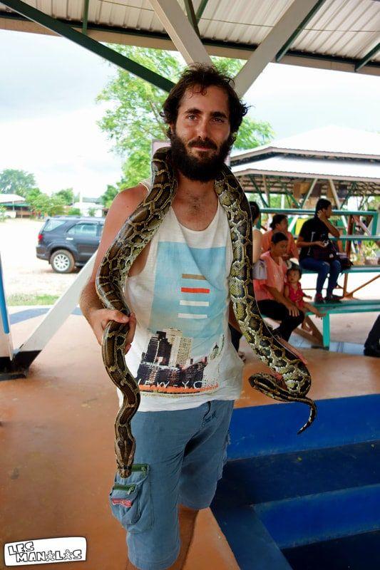 lesmanalas_steve_serpent