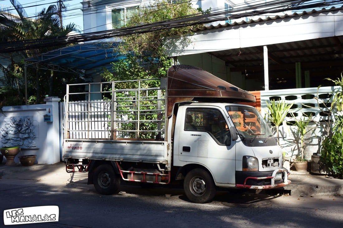 lesmanalas_camion_thai