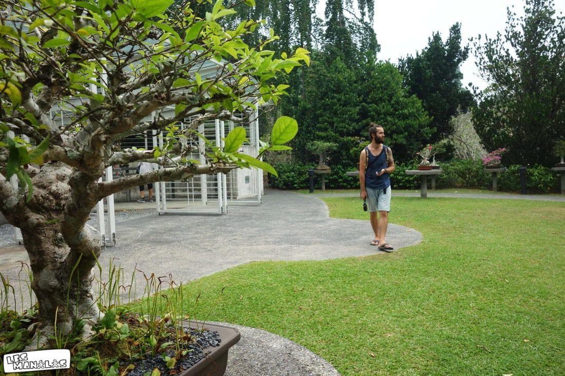 lesmanalas-singapour-botanic-garden-2_orig