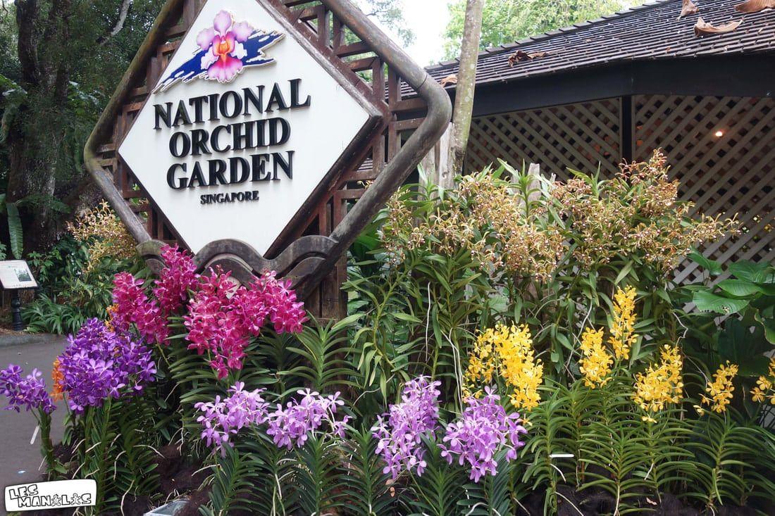 lesmanalas-singapour-botanic-garden-5_orig