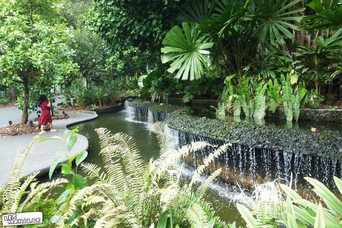 lesmanalas-singapour-botanic-garden7_orig