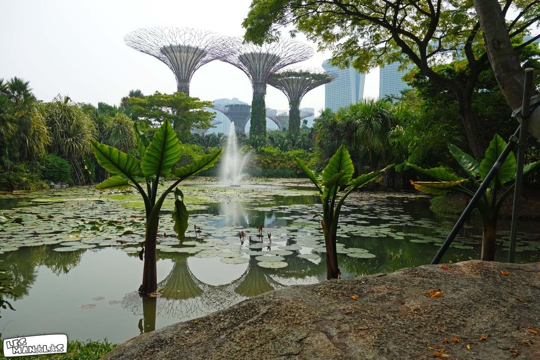 lesmanalas-singapour-garden-by-the-bay-3_orig