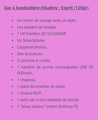 sac_bandouliere_audrey